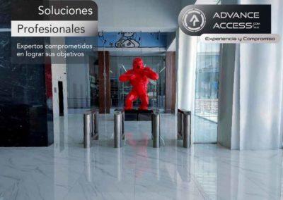 Komplex Gorlia Soluciones profesionales-01